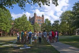 sample college essays ivy league ivy league schools acceptance rates location more your chances of getting accepted to an ivy league business schools