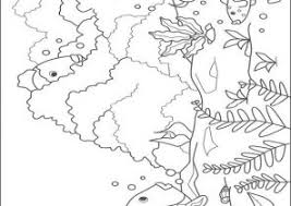rainbow fish coloring pages coloring4free com