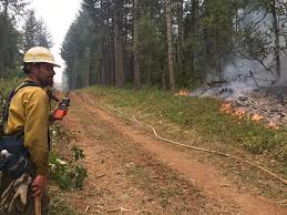 Wild Fire Columbia Gorge by Evacuation Warnings Downgraded For Some In Skamania County The