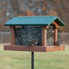 clear plastic window bird feeder shop bird feeders at lowes com