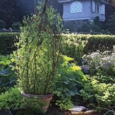 Build A Rose Trellis 15 Inspiring Diy Garden Trellis Ideas For Growing Climbing Plants