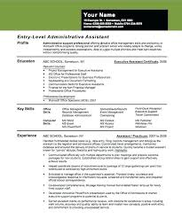 entry level resume summary best finance templates free word
