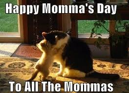 Meme Mothers Day - happy mother s day memes inotternews com
