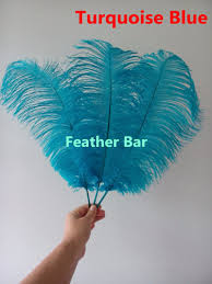Where To Buy Ostrich Feathers For Centerpieces by Online Get Cheap Turquoise Ostrich Feathers Aliexpress Com