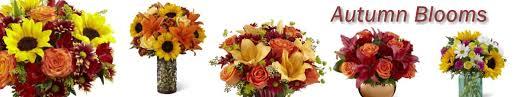 bellevue florist janousek florist bellevue florist providing bellevue ne