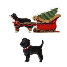 affenpinscher group 40 best affenpinscher signs and pictures images on pinterest dog
