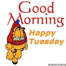 garfield morning happy tuesday pictures photos and images