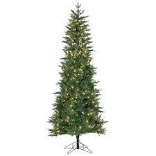 Natural Christmas Tree For Sale - artificial u0026 fresh christmas trees williams sonoma