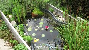 How To Build A Fish Pond In Your Backyard Diy Build A Garden Pond In A Raised Bed Empress Of Dirt