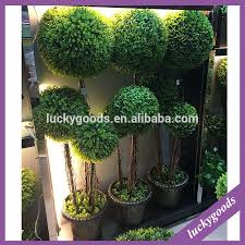 artificial plants artificial plants suppliers and manufacturers