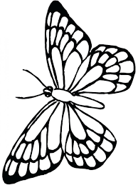 monarch butterfly coloring caterpillar free pages monarch