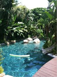 best 25 tropical pool ideas on pinterest beautiful pools dream