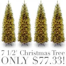 national tree 7 1 2 kingswood fir pencil tree only 77 33
