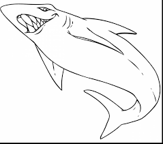 excellent basking shark coloring pages shark coloring