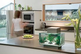 fluval edge 23l aquarium pewter amazon co uk pet supplies