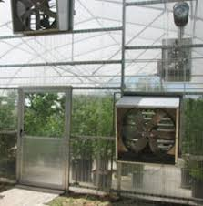 ventilation fans for greenhouses greenhouse ventilation fans fan ventilation