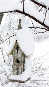 308 best grateful the season of winter images on pinterest