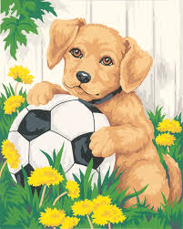 puppy and soccer ball paint by number beginner 050777 details