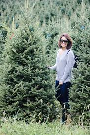 colossians 2 7 north carolina christmas tree farm how 2 wear it
