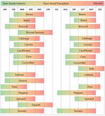 best 25 zone 9 gardening ideas on pinterest perennials full