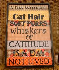 a day without cat hair cat owners pet lovers wall decor pet