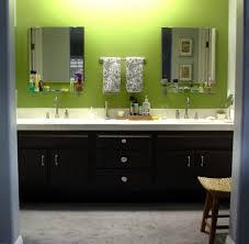 bathroom cabinets painting ideas terrific bathroom cabinets painting ideas with lime green wall