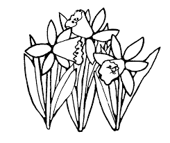 daffodil clipart black and white clipart panda free clipart images