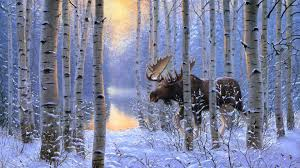 moose in the snowy birch forest painting art wallpaper