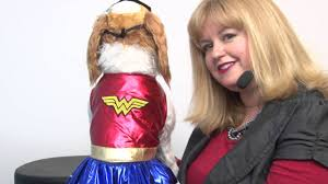 halloween costumes wonder woman wonder woman dog halloween costume youtube