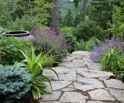 Budget Backyard Landscaping Ideas Enamour Images About Landscape Ideas On Backyards Backyard