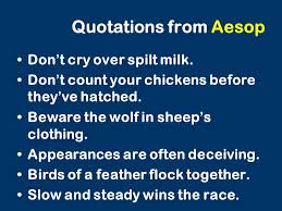 Count Your Chickens Before They Hatch Meaning Fables And Allegories And Satire An Introduction To Farm