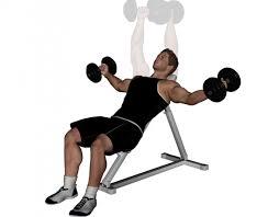 Flat Bench Press Dumbbell Pro Bodybuilder Uk Chest Day