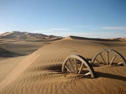 organic spectroscopy international sahara desert