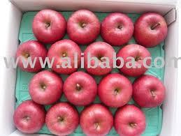 apple japan japanese fuji apple buy apple product on alibaba com