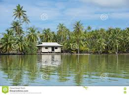 coastal landscape typical home of french polynesia stock photo