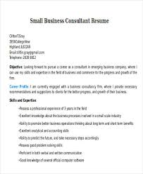 Business Consultant Resume Example by Business Resume Sample Free U0026 Premium Templates