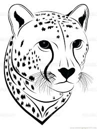 coloring pages impressive cheetah coloring pages cheetah