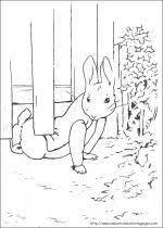 28 best rabbits images on pinterest rabbits worksheets and