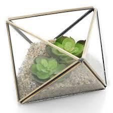 amazon com terrariums pots planters u0026 container accessories