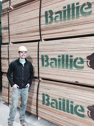 Sheryl Stringer by New Donalds Sc Yard Manager Hired From Within Baillie Lumber
