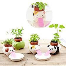 cute plant amazon com self watering animal planter cute style ceramic mini