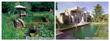 Backyard Swimming Ponds - diy natural pools build your own swimming pond