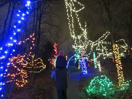Zoo Lights Dates by Christmas At The Indy Zoo The Indiana Insider Blog