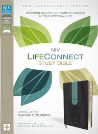 niv lifeconnect study bible imitation leather gray blue