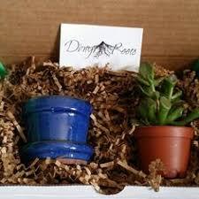 plant of the month club plant of the month club 1 plant 1 plant accessory plants
