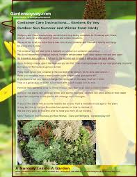The Summer And Winter Garden - planting instructions gardens oy vey an online nursery