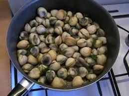 cuisiner des palourdes la cuisson des coques