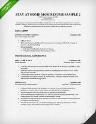 functional resume stay at home mom examples
