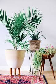 Planters First Online by 1584 Best Indoor Planters Pots Images On Pinterest Plants