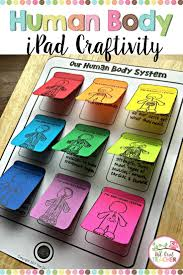 best 25 human digestive system ideas on pinterest get revising